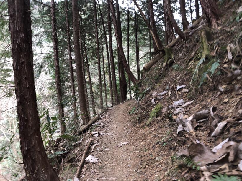 城山湖から大垂水峠へ134