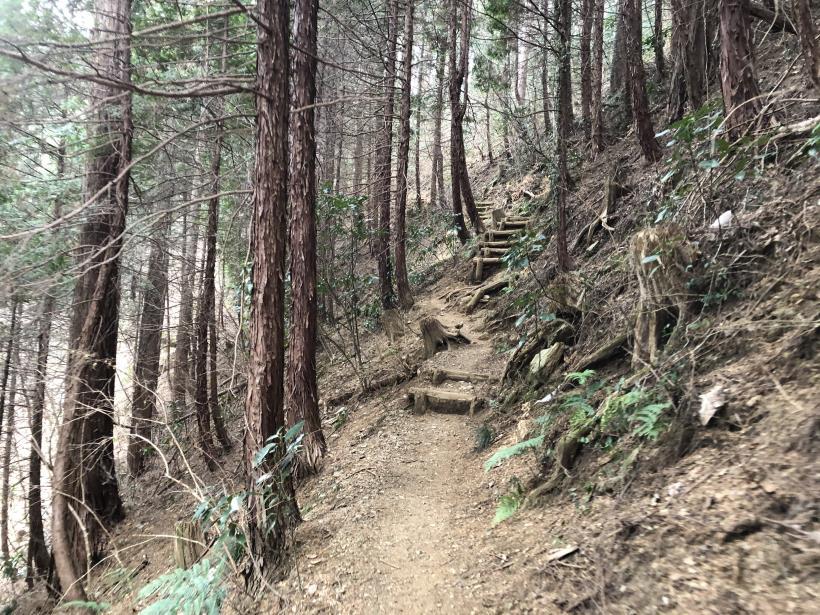 城山湖から大垂水峠へ135