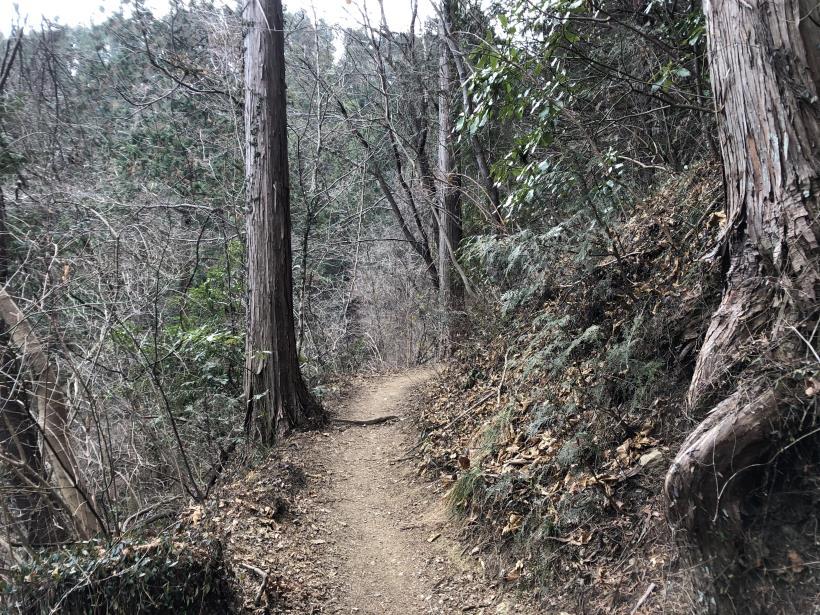 城山湖から大垂水峠へ140