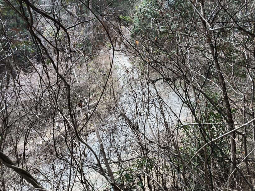 城山湖から大垂水峠へ141
