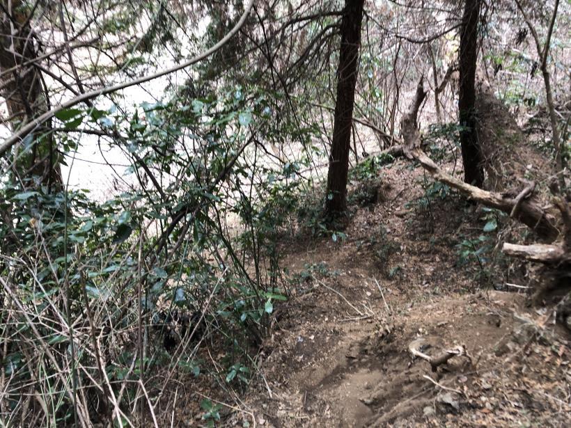 城山湖から大垂水峠へ142