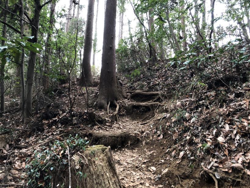 城山湖から大垂水峠へ143