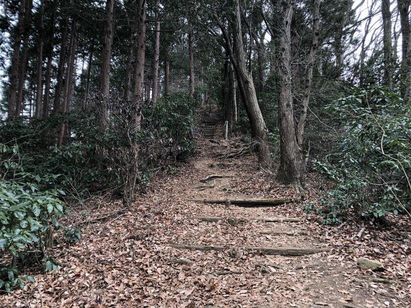 城山湖から大垂水峠へ145