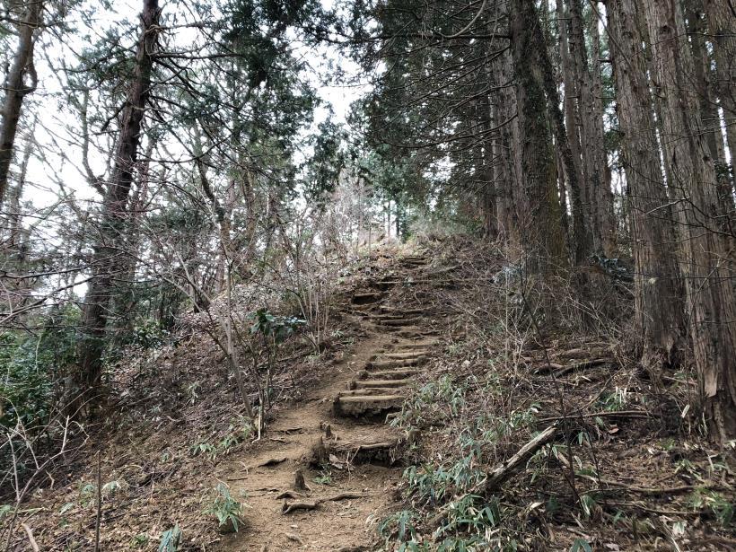 城山湖から大垂水峠へ146