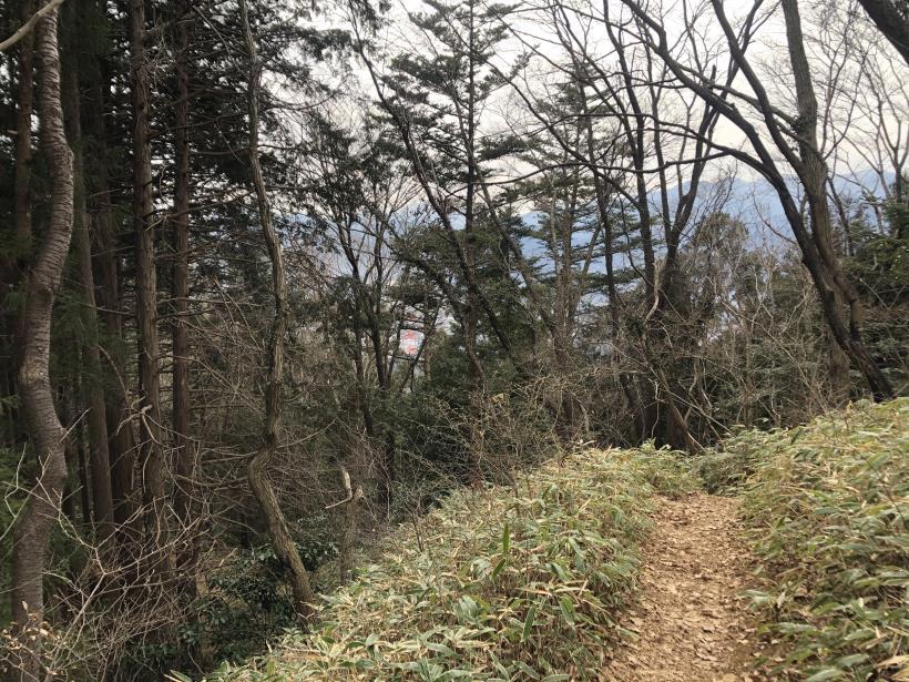 城山湖から大垂水峠へ151