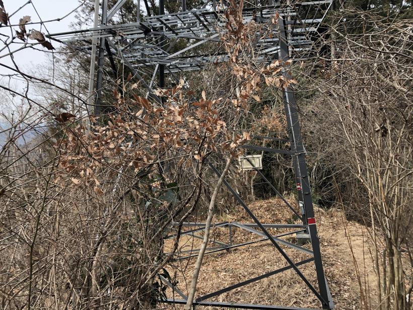 城山湖から大垂水峠へ154