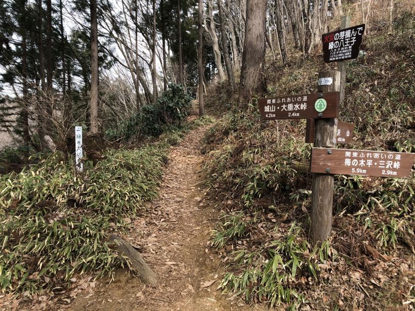 城山湖から大垂水峠へ158
