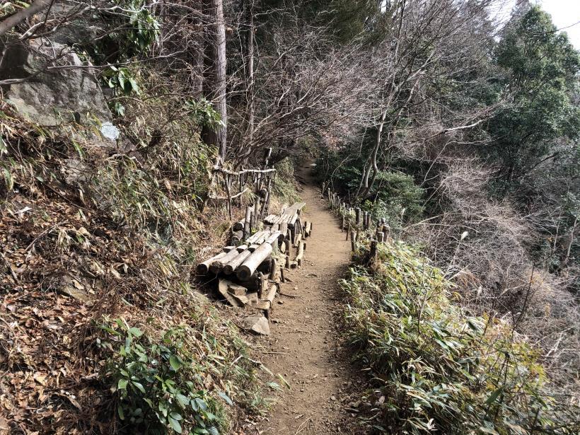 城山湖から大垂水峠へ159