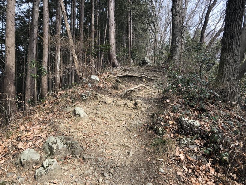 城山湖から大垂水峠へ162