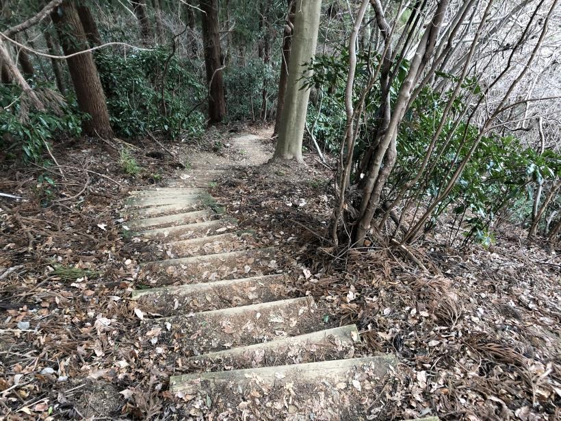 城山湖から大垂水峠へ164