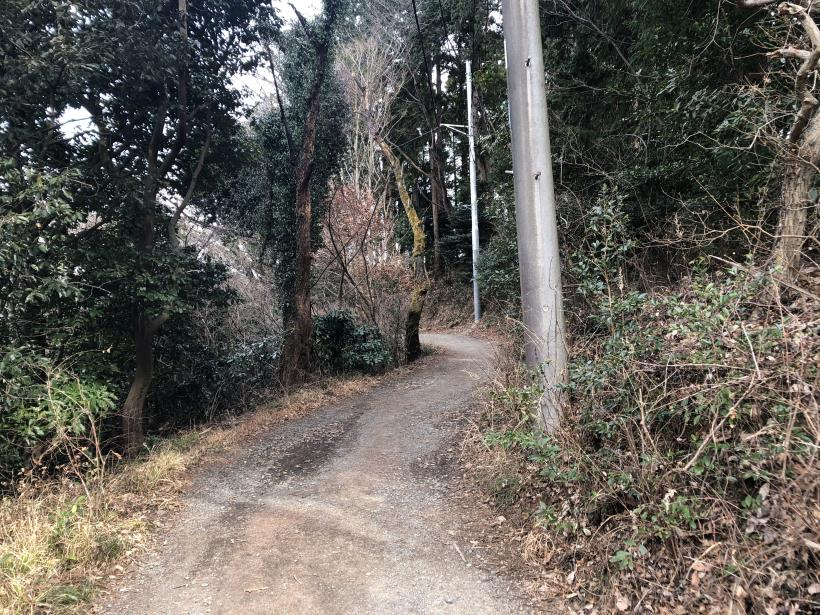 城山湖から大垂水峠へ169