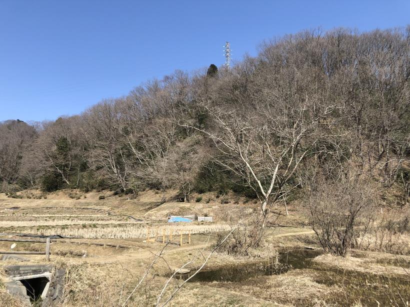横沢入の石切り場跡05