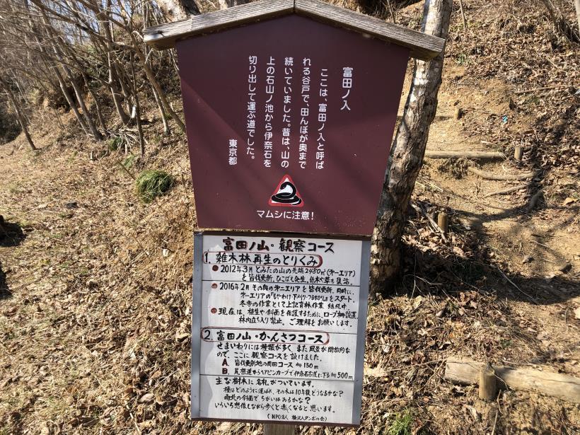 横沢入の石切り場跡09