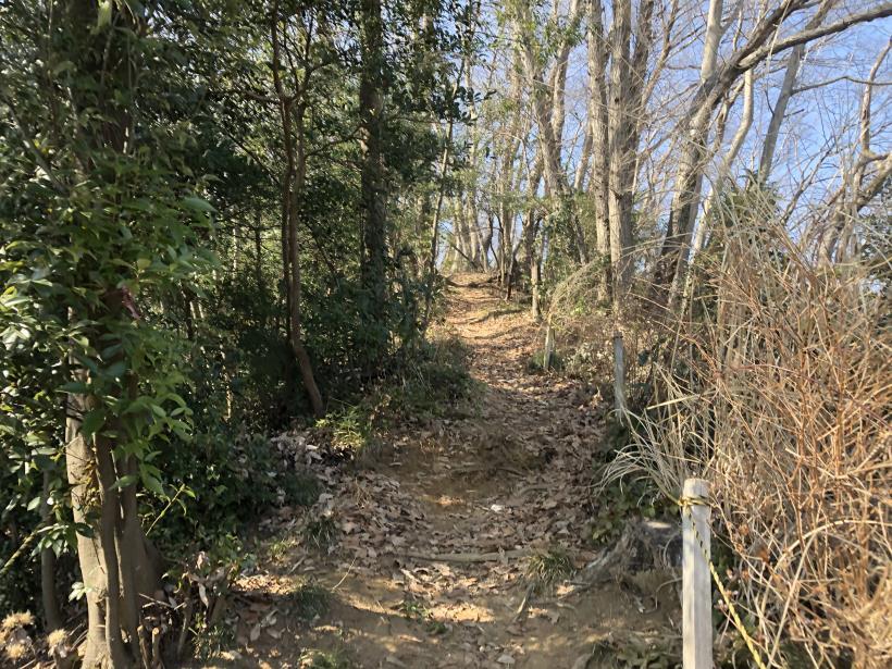 横沢入の石切り場跡16