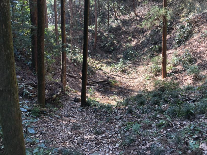 横沢入の石切り場跡30