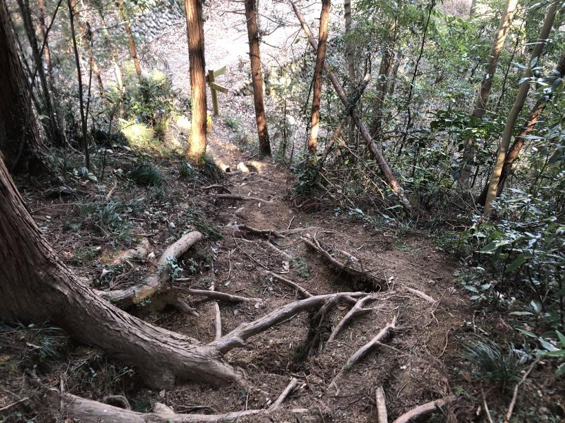 横沢入の石切り場跡56