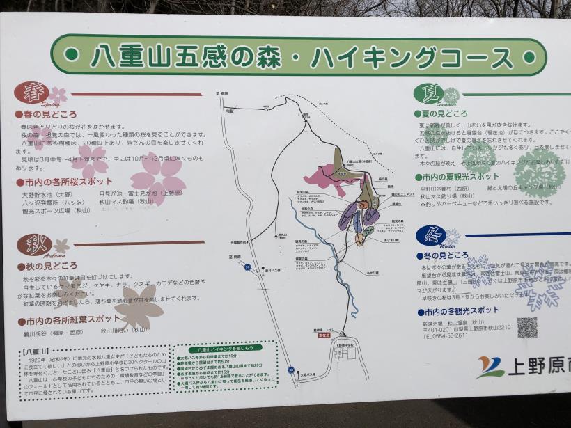 八重山(上野原)05
