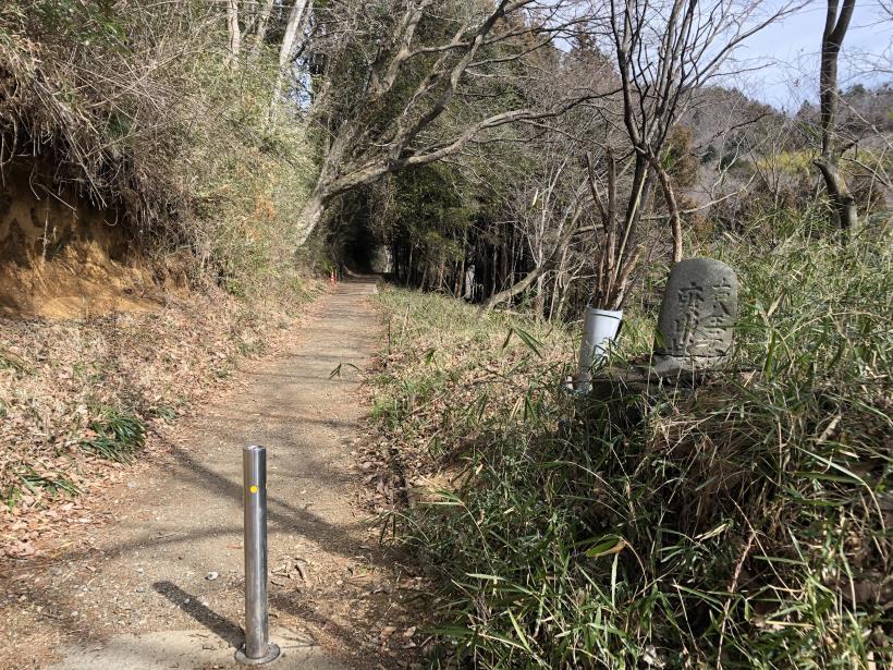 八重山(上野原)08