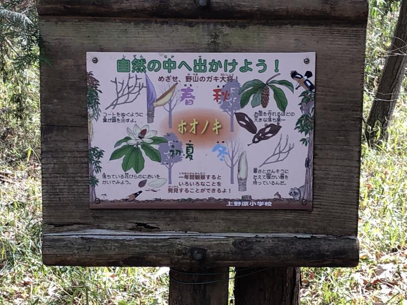 八重山(上野原)09
