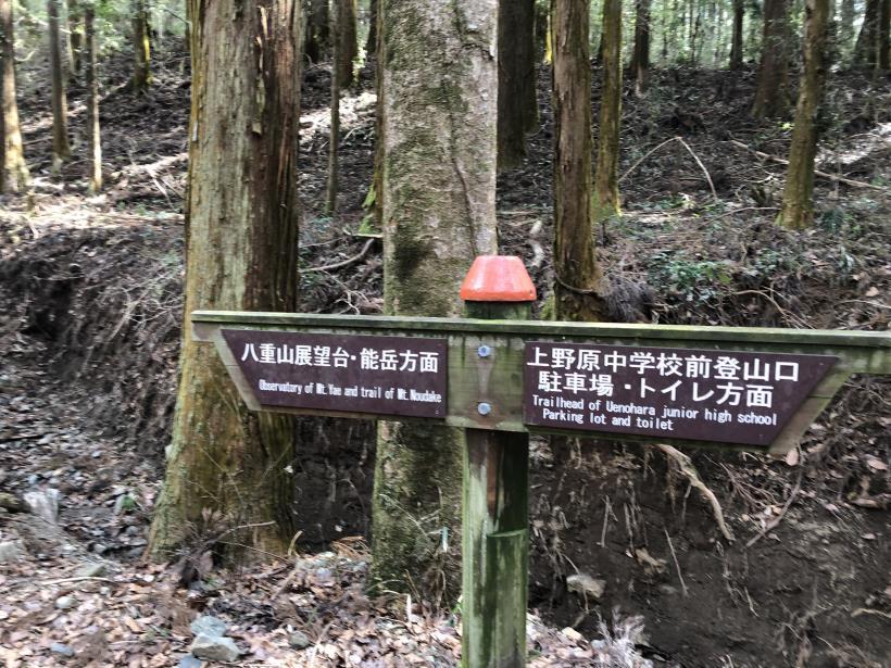 八重山(上野原)25