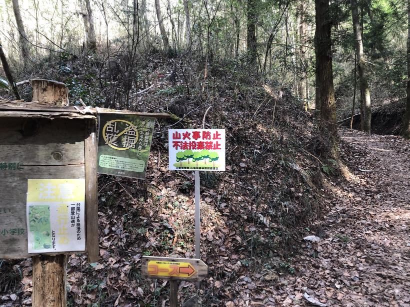 八重山(上野原)26