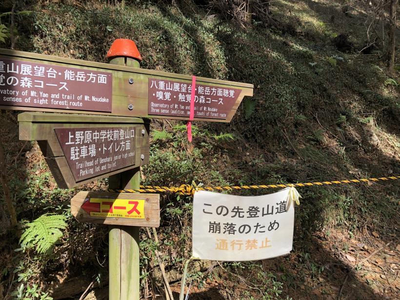 八重山(上野原)34