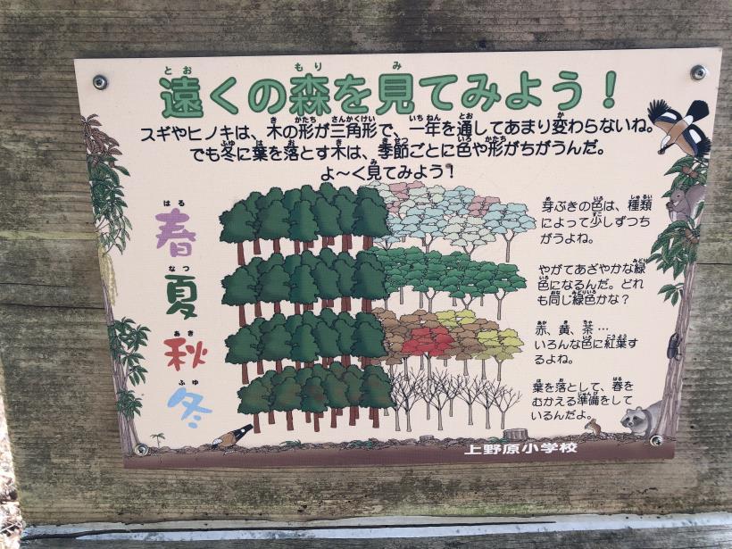 八重山(上野原)48