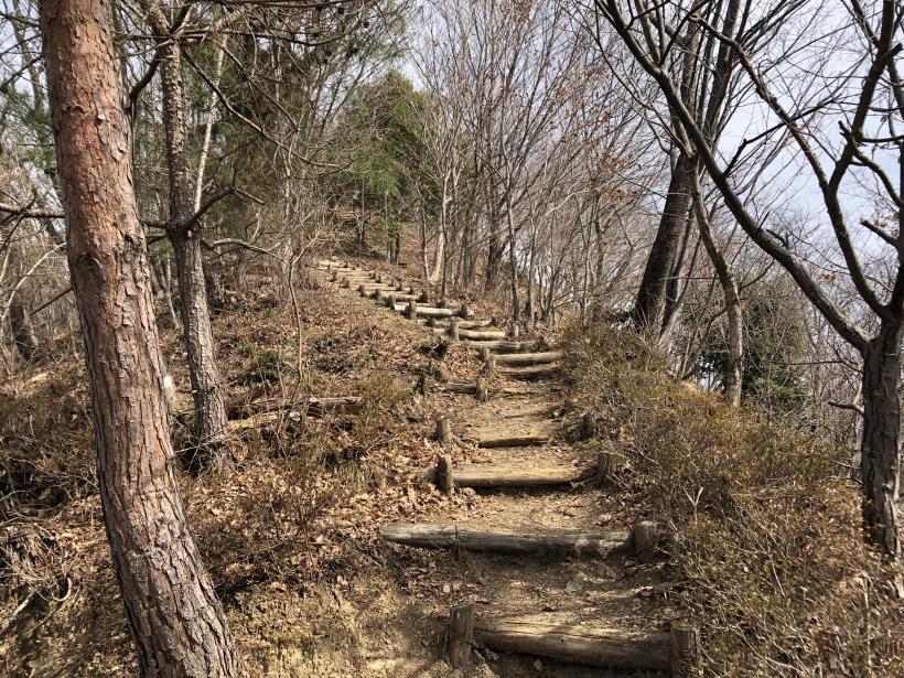 八重山(上野原)64
