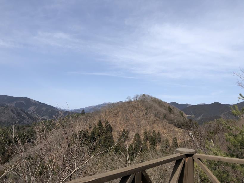 八重山(上野原)78