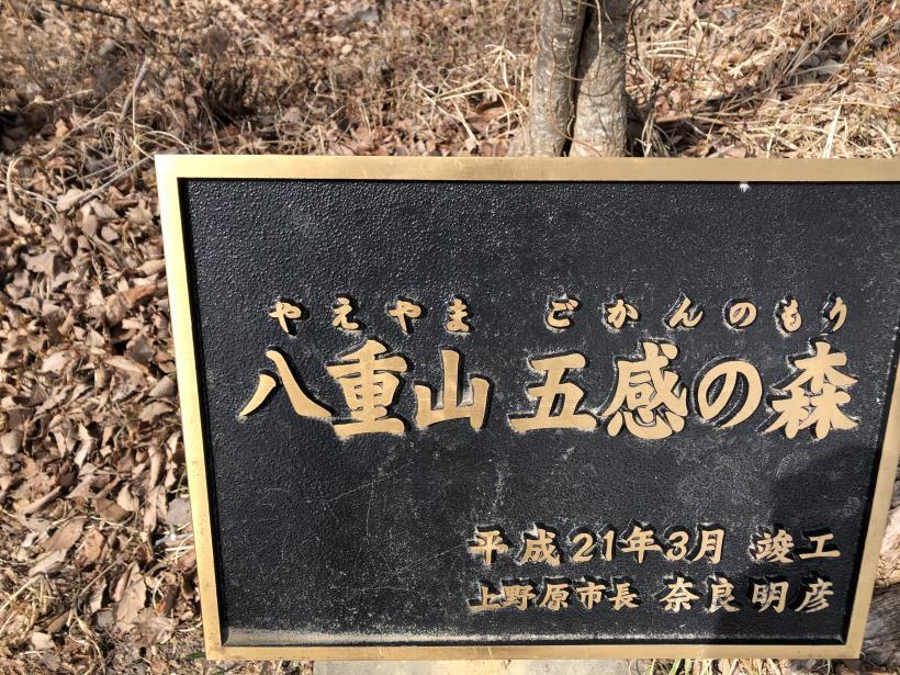 八重山(上野原)80