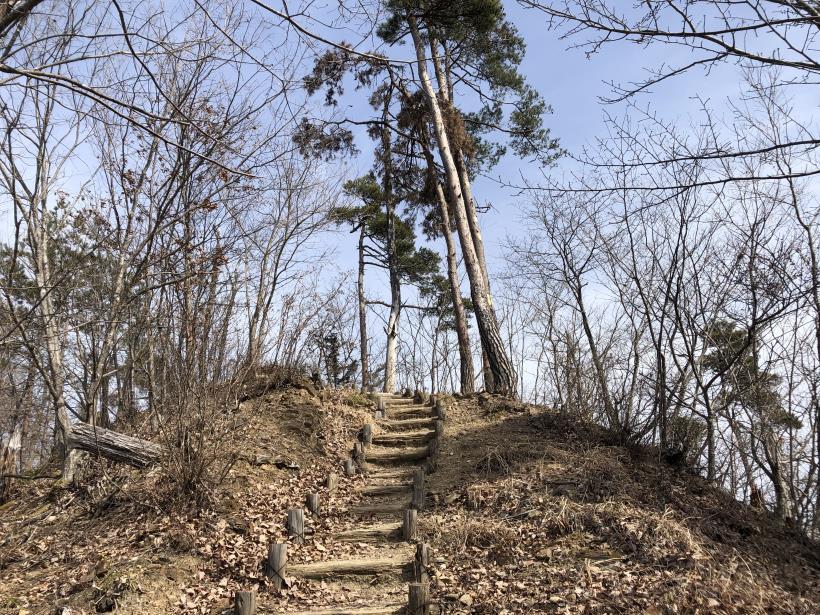 八重山(上野原)83