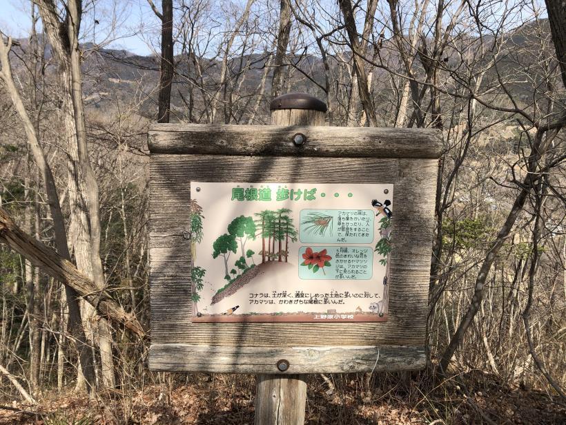 八重山(上野原)88