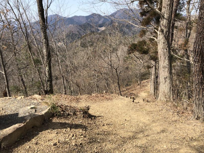 八重山(上野原)90