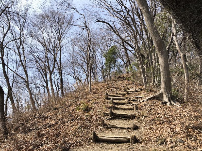八重山(上野原)101
