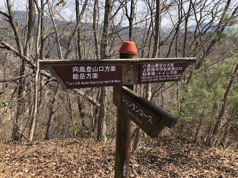 八重山(上野原)110