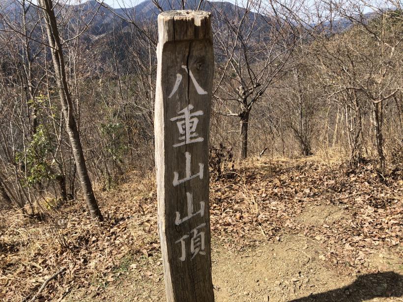 八重山(上野原)111