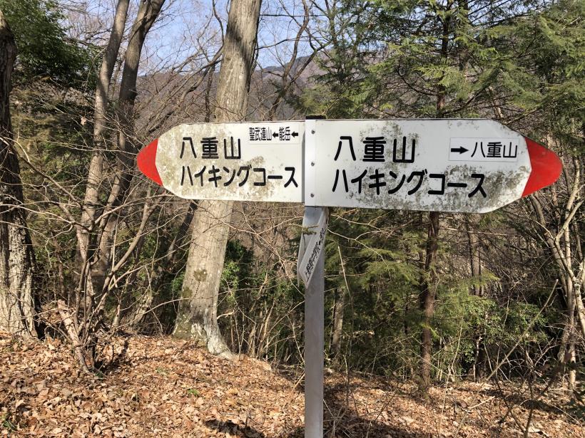 八重山(上野原)114