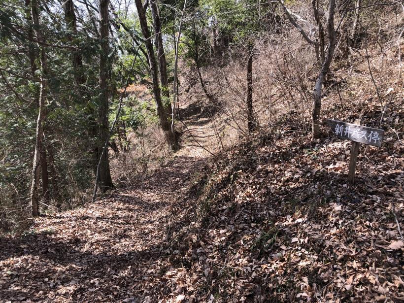 八重山(上野原)116