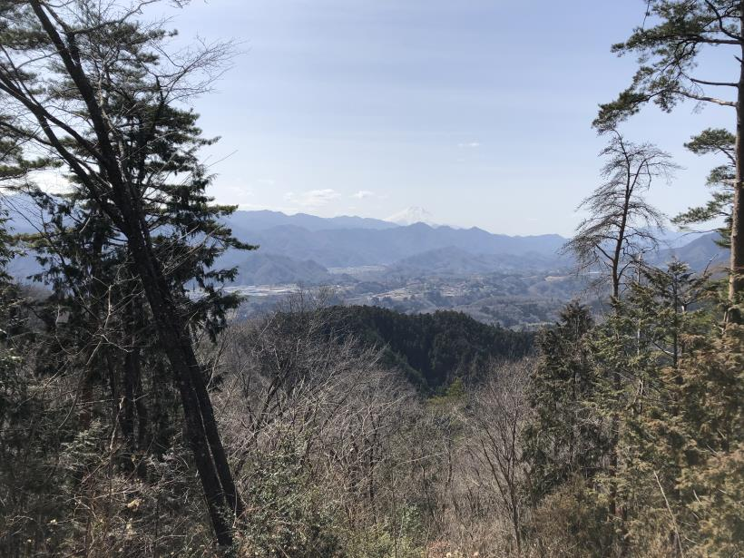 八重山(上野原)127