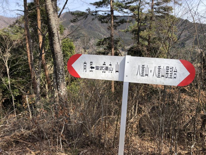 八重山(上野原)129