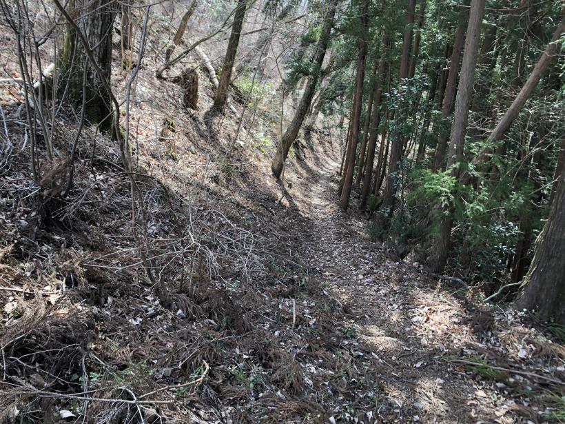 八重山(上野原)136