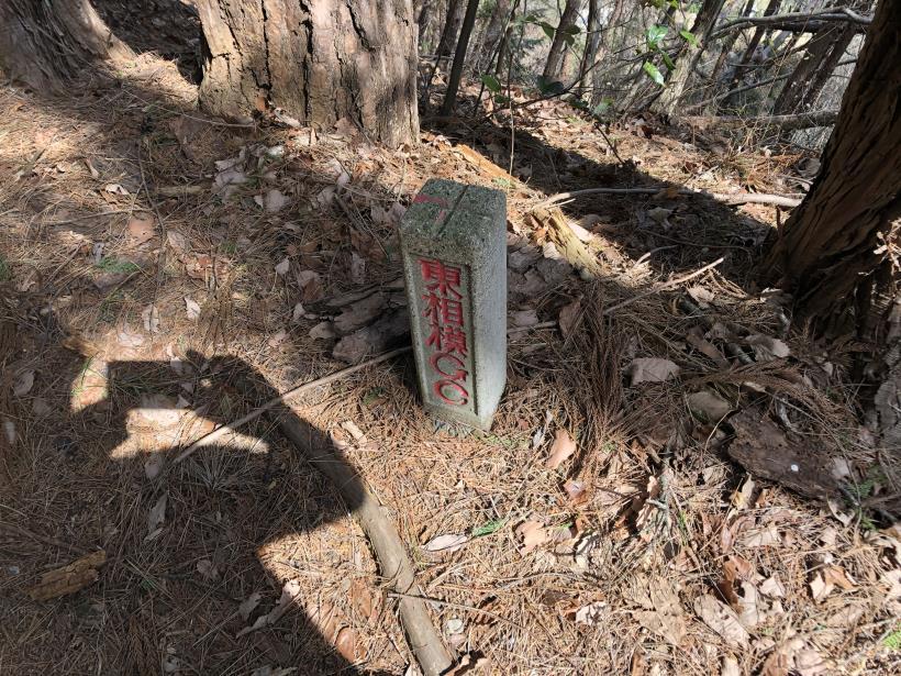 八重山(上野原)141