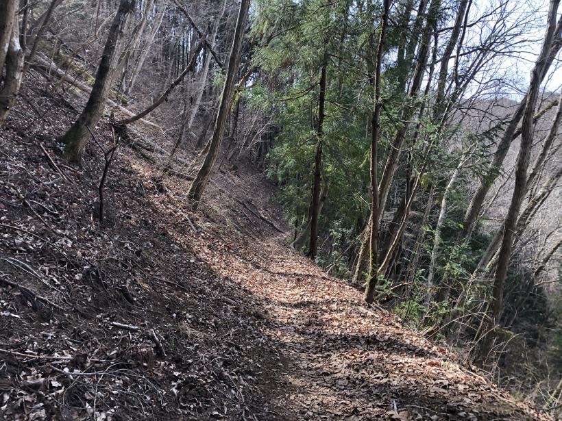 八重山(上野原)156