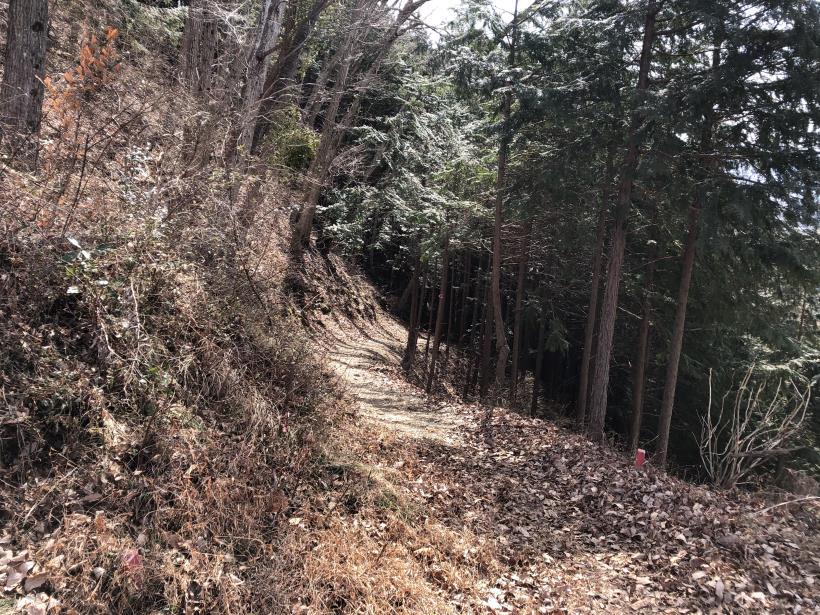 八重山(上野原)162