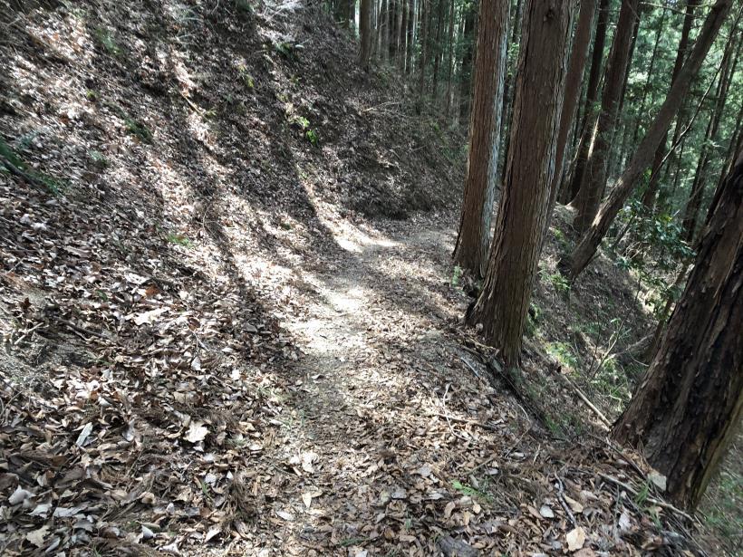 八重山(上野原)163