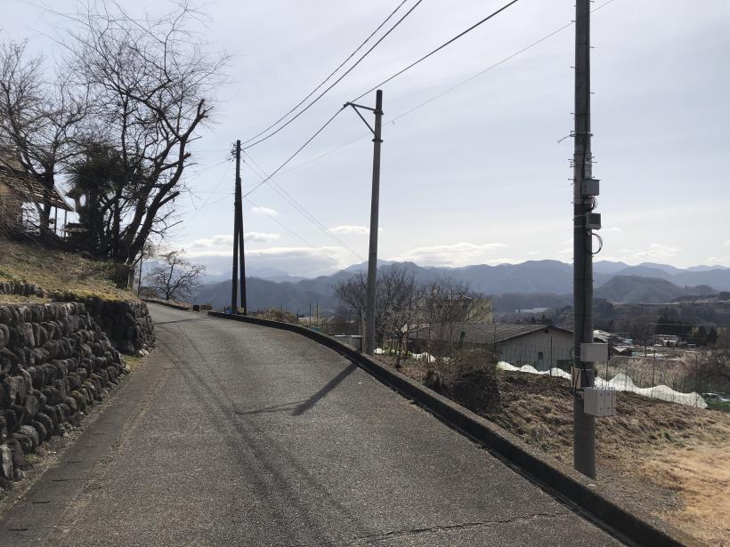 八重山(上野原)181