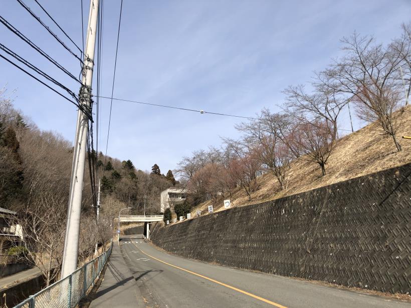 八重山(上野原)189