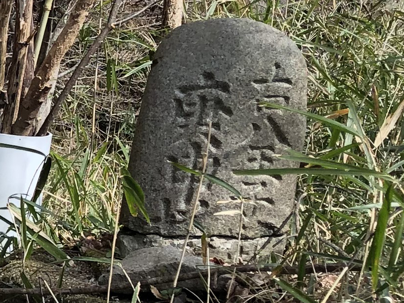 八重山(上野原)08B