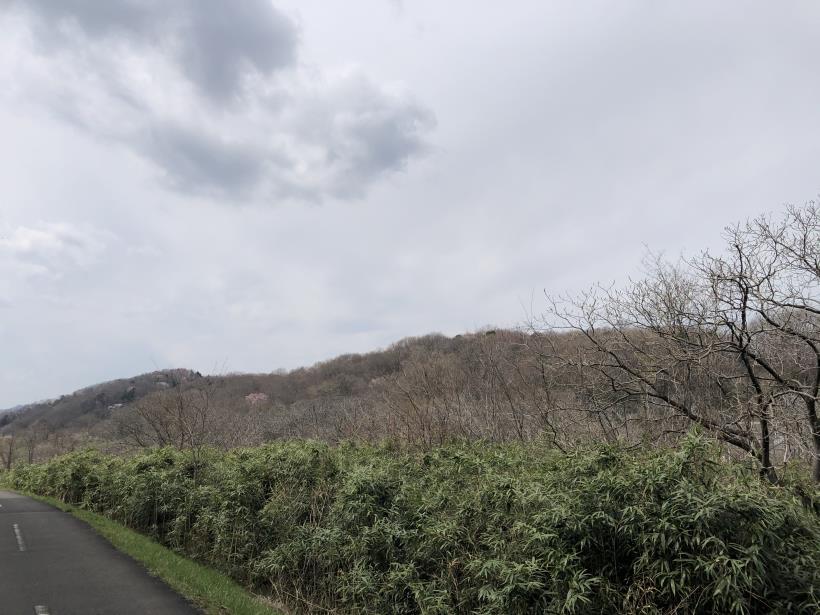 北浅川のかなりいい場所11