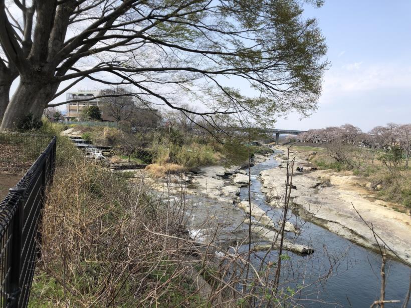 北浅川のかなりいい場所40